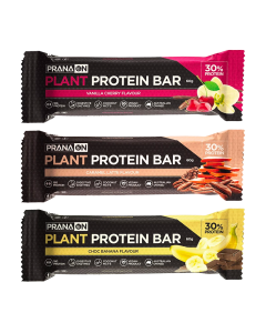 Pranaon Plant Power Protein Bar x12